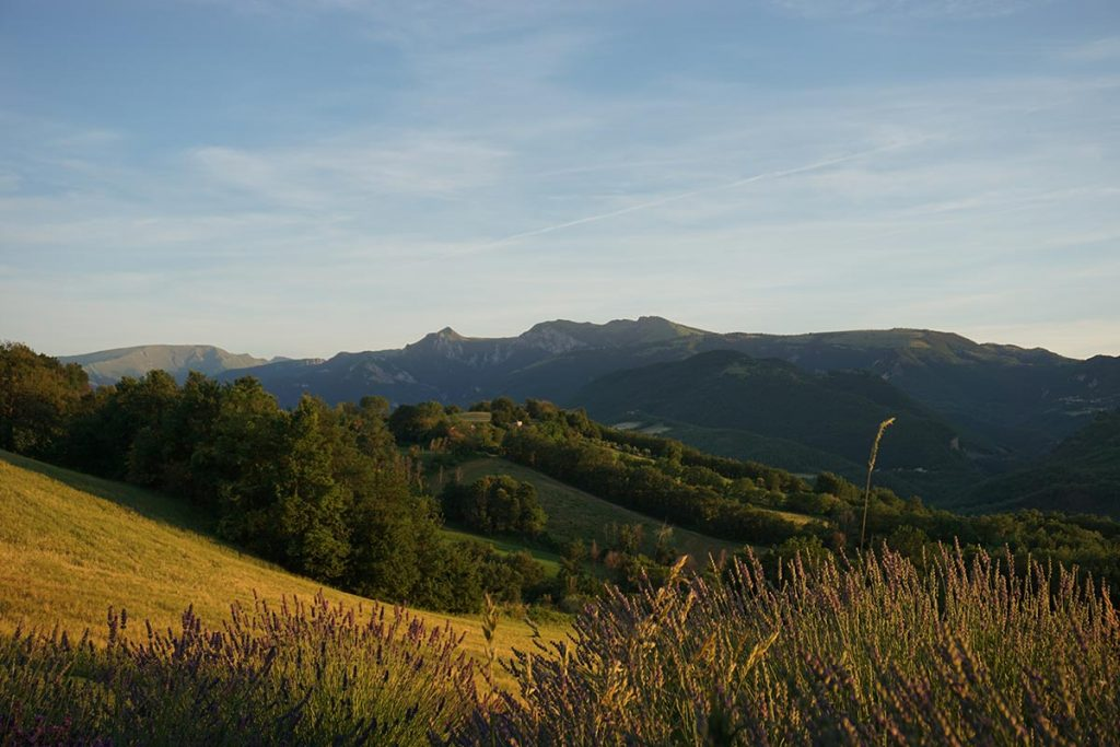 Le marche omgeving